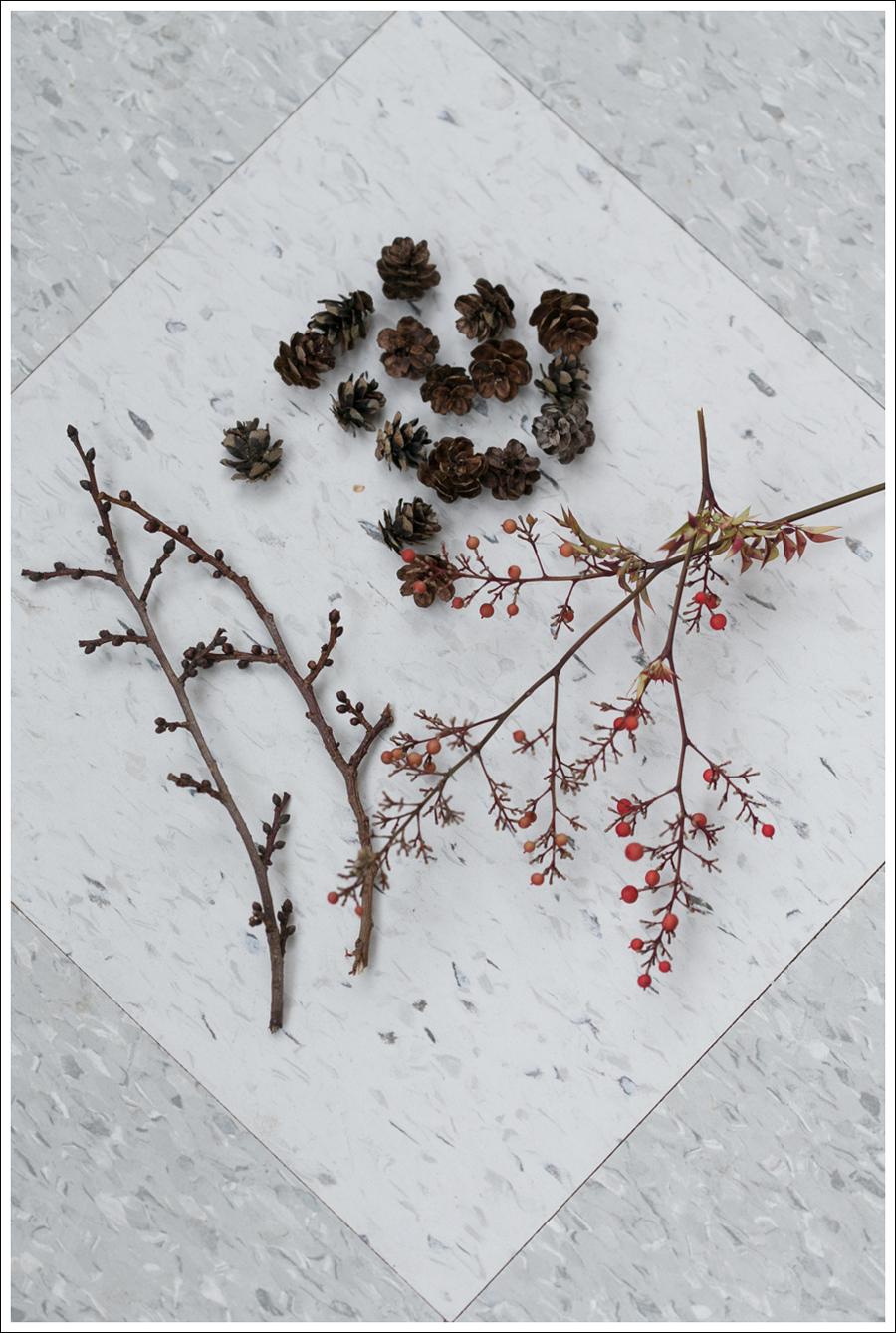 Blog DIY Christmas Pinecones-2