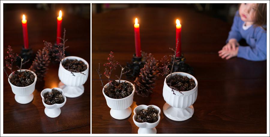 Blog DIY Christmas Pinecones-6