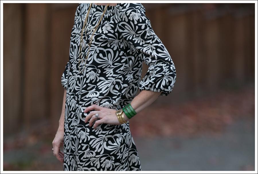 Blog Joie Silk Dress-3