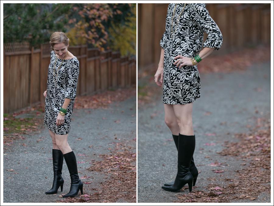 Blog Joie Silk Dress-6