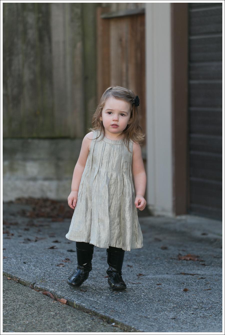 Blog Joie Silk Dress-9