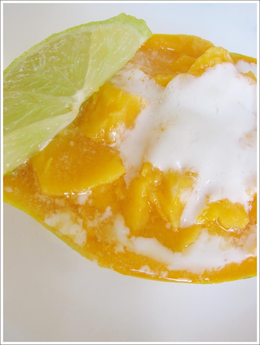 Blog papaya2