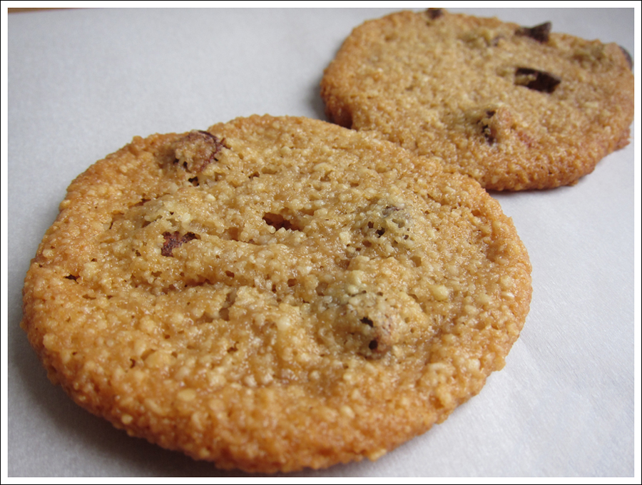 blog chocochipcookies
