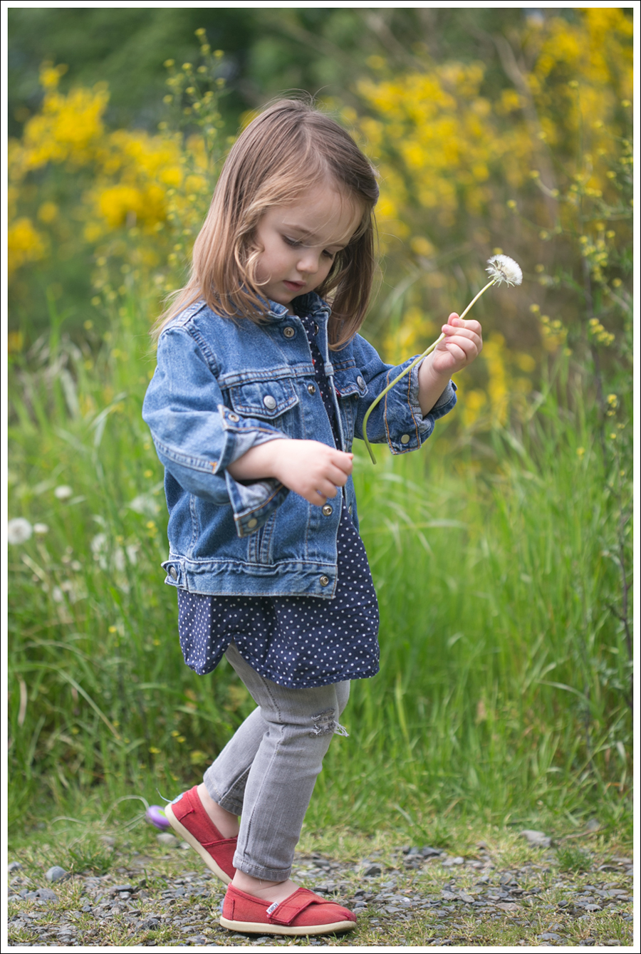 Blog Maya 135 weeks Levis Jacket Gray destroyed Gap Toms-3