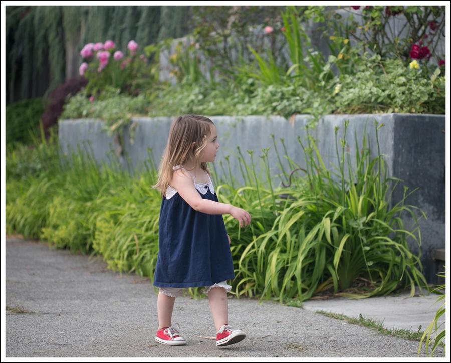Blog Gap Dress B Nature Bloomers Red Converse-5