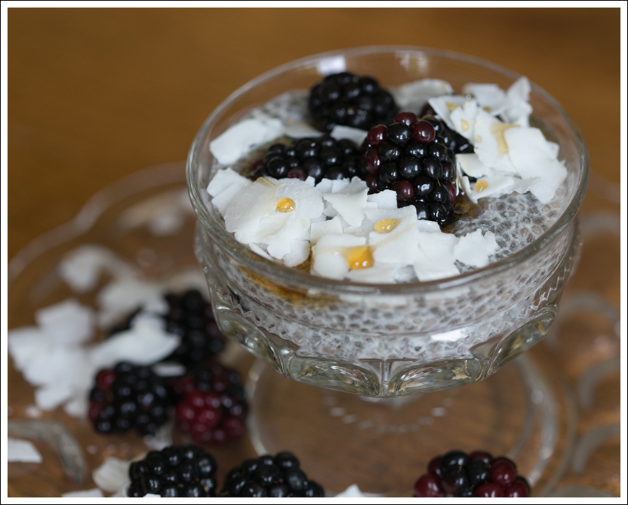 Blog Paleo Chia Pudding with Blackberries Coconut Shavings-2