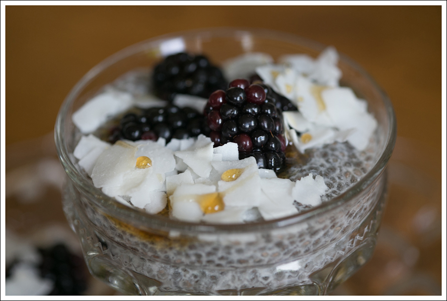 Blog Paleo Chia Pudding with Blackberries Coconut Shavings-3