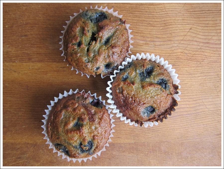 Blog blueberrypaleomuffins1