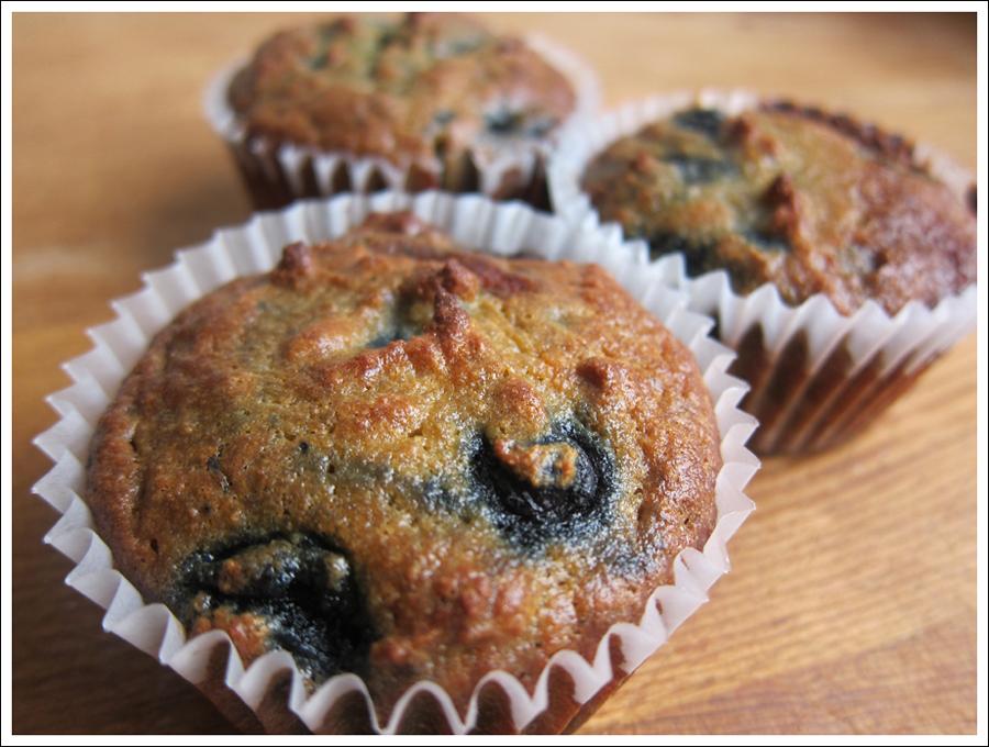 Blog blueberrypaleomuffins2