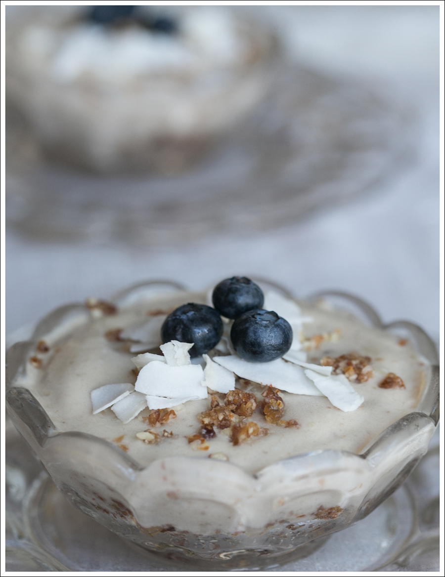 Blog Paleo Vegetarian Vegan Banana Almond Coconut Ice Cream Pies-2