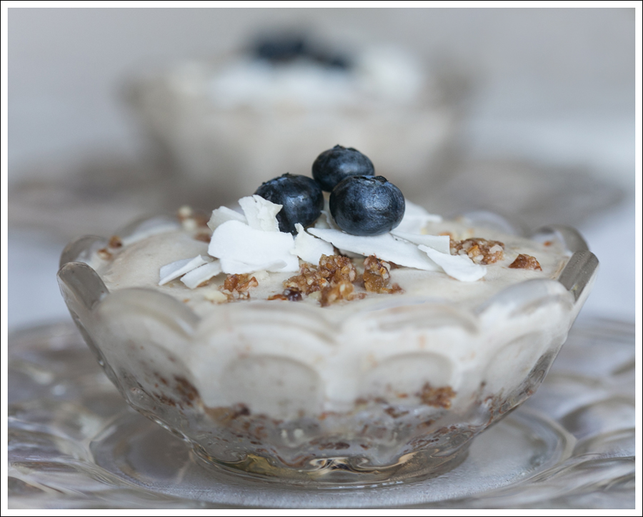 Blog Paleo Vegetarian Vegan Banana Almond Coconut Ice Cream Pies-