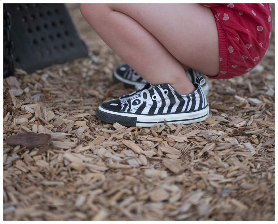 Blog Red Gap Romber Zebra Converse-3