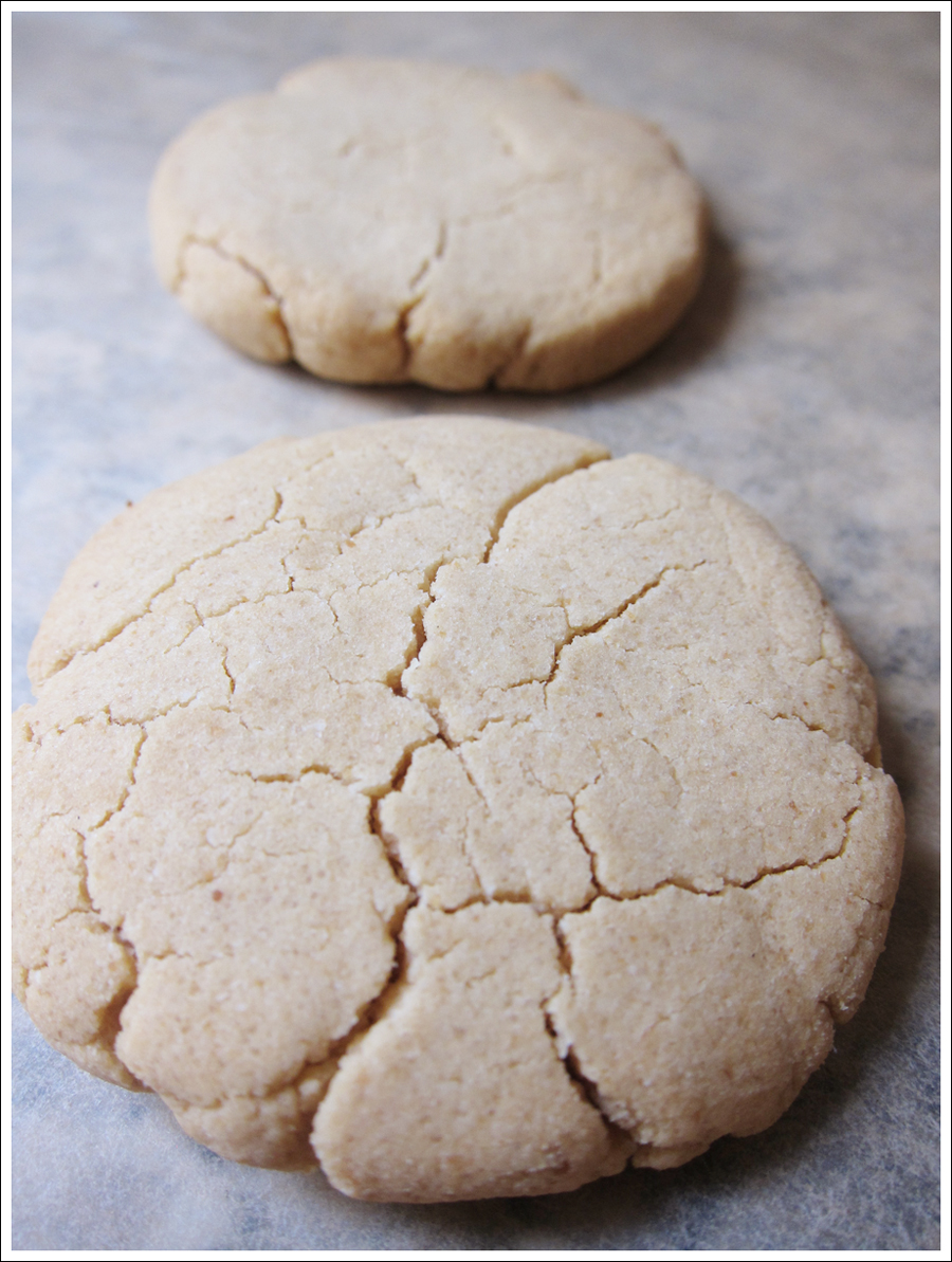 Blog tiramisu paleo biscuits (1)