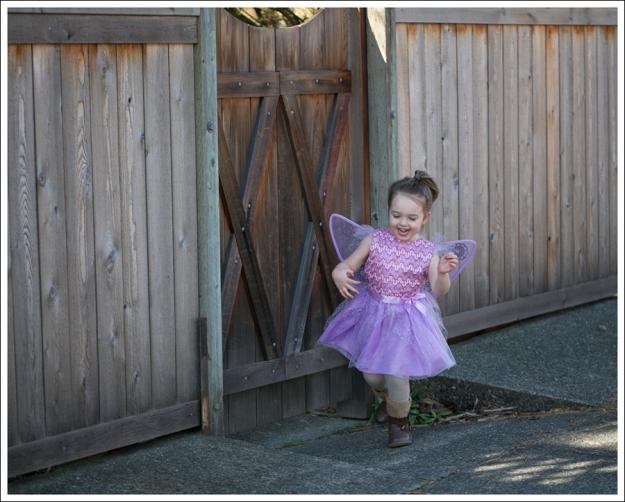 Blog Fairy Costume-1