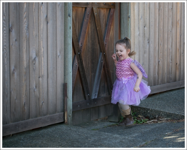 Blog Fairy Costume-2