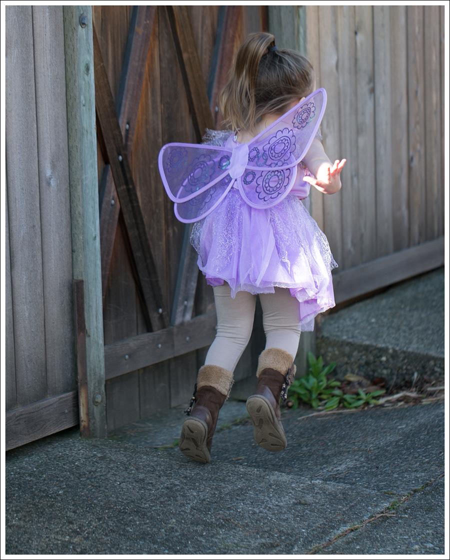 Blog Fairy Costume-3