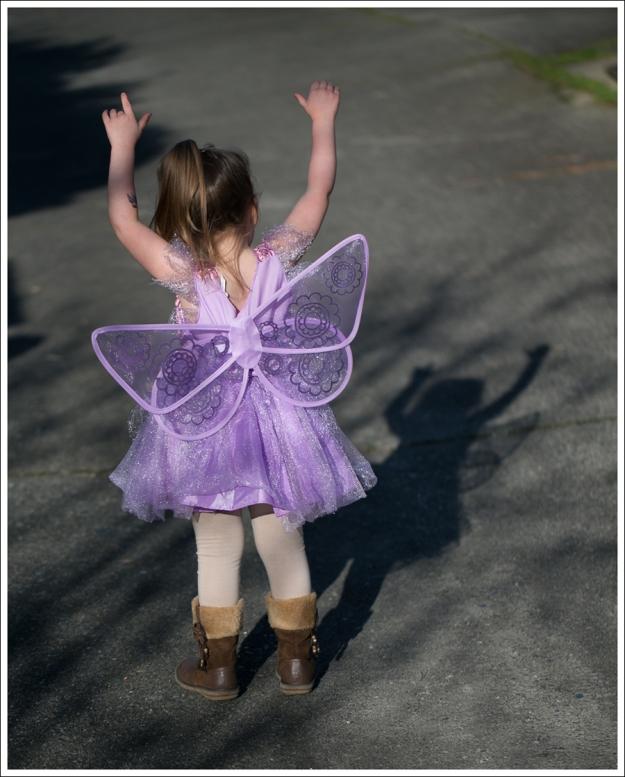 Blog Fairy Costume-5