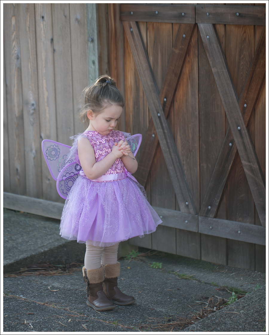Blog Fairy Costume-7