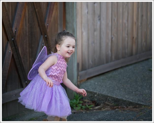 Blog Fairy Costume-9