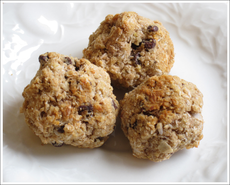 Blog Oat Ball Bites-2