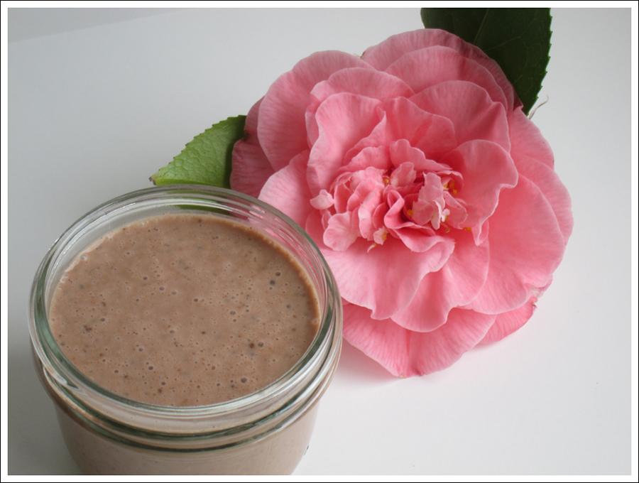 Blog chocolate chia pudding blog (1)