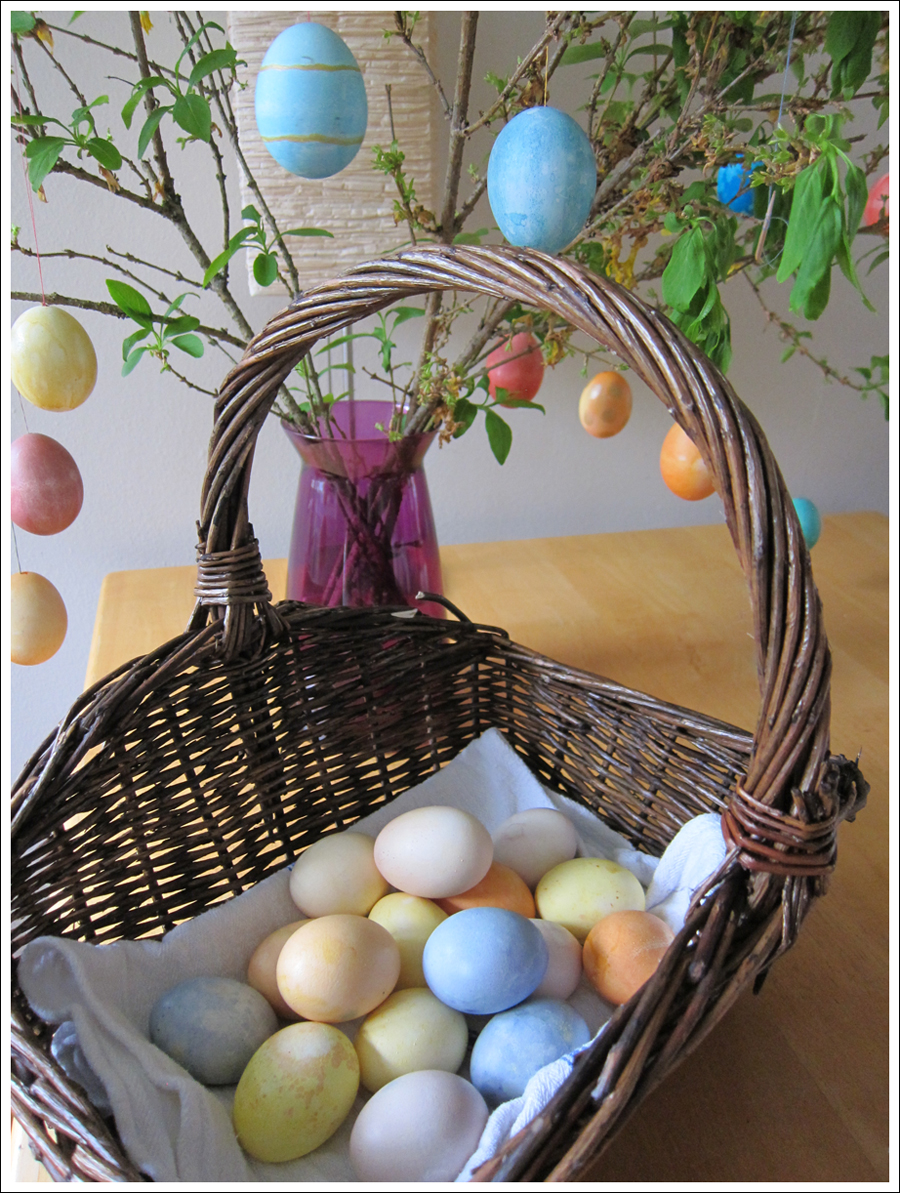 Blog DIY Natural Dyed Easter Eggs-1