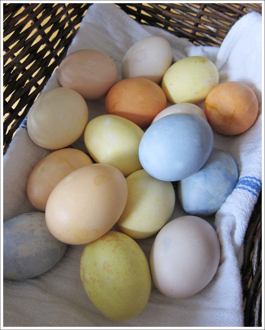 Blog DIY Natural Dyed Easter Eggs-2