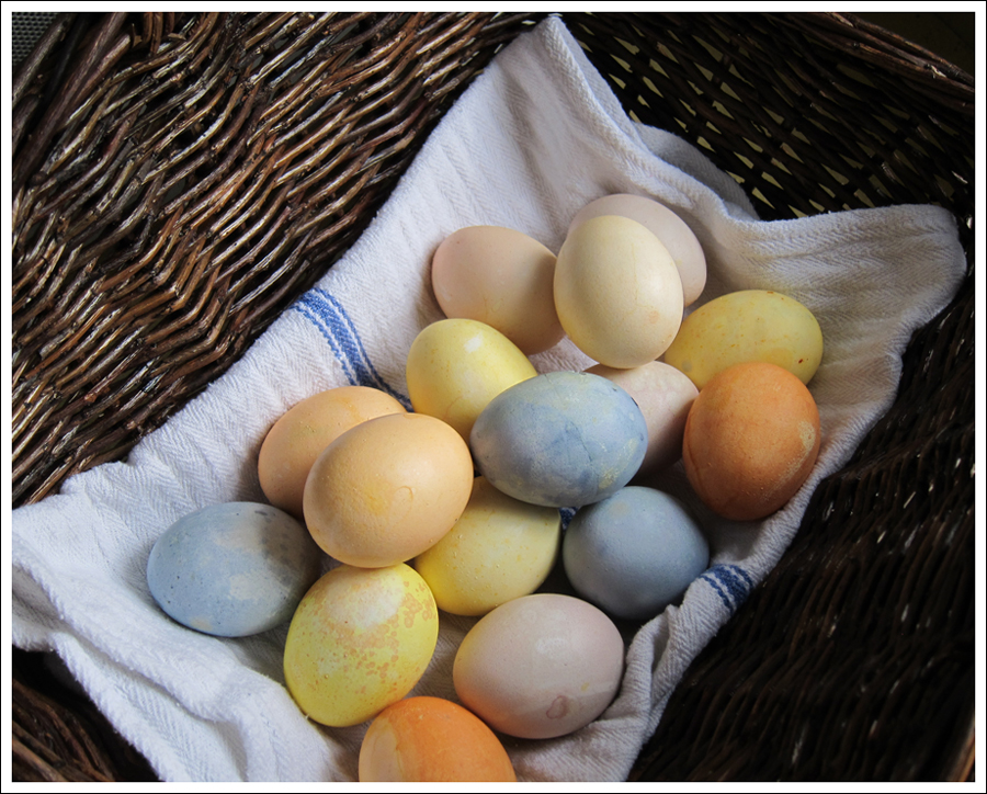 Blog DIY Natural Dyed Easter Eggs-6