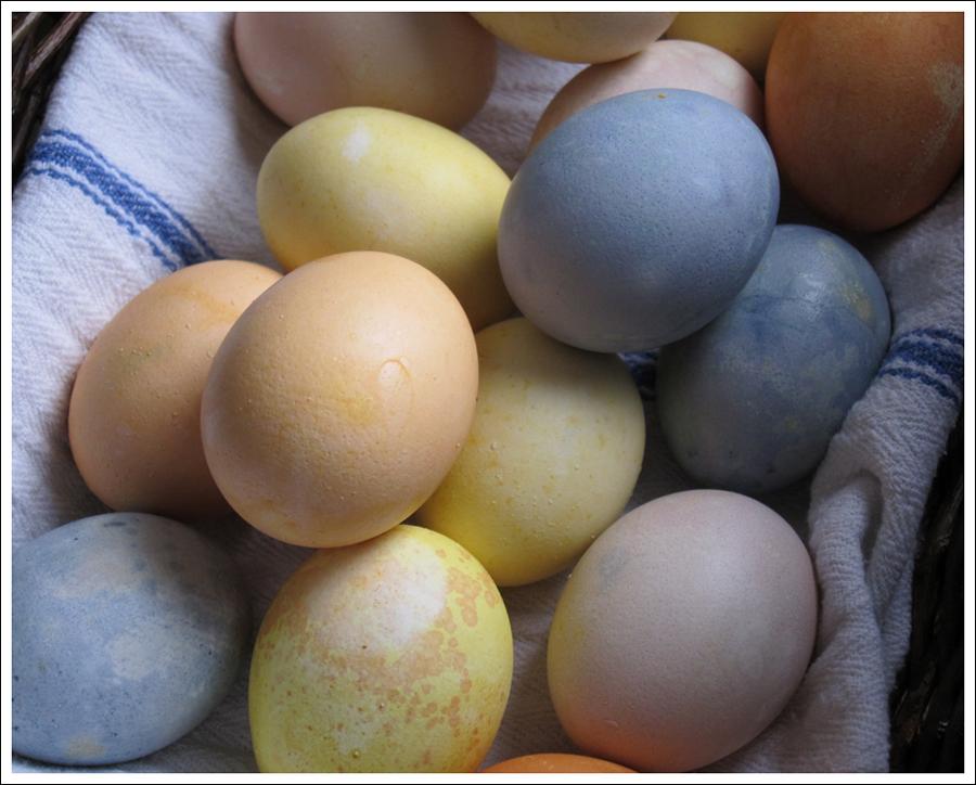 Blog DIY Natural Dyed Easter Eggs-7