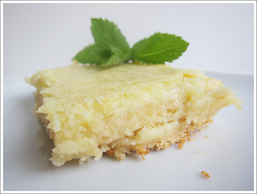 Blog Paleo Lemon Bars-1