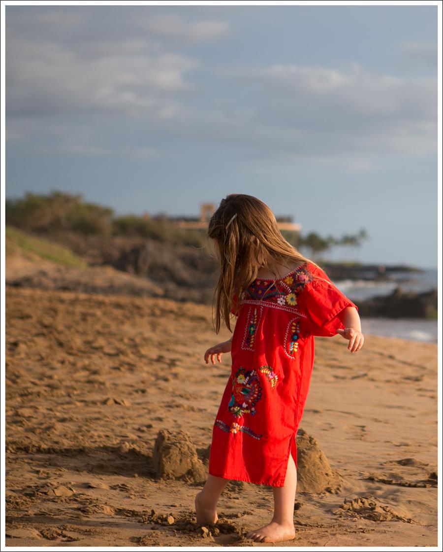 Blog Maui Day 3-3
