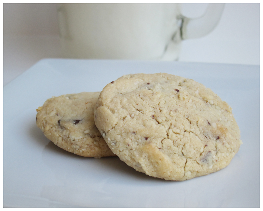 Blog Paleo chocolate chip cookies-1