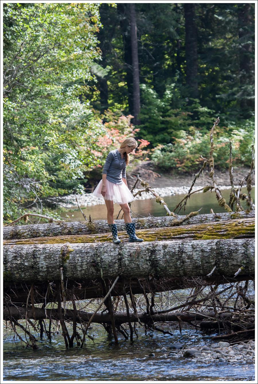 Bear Hunt (41)