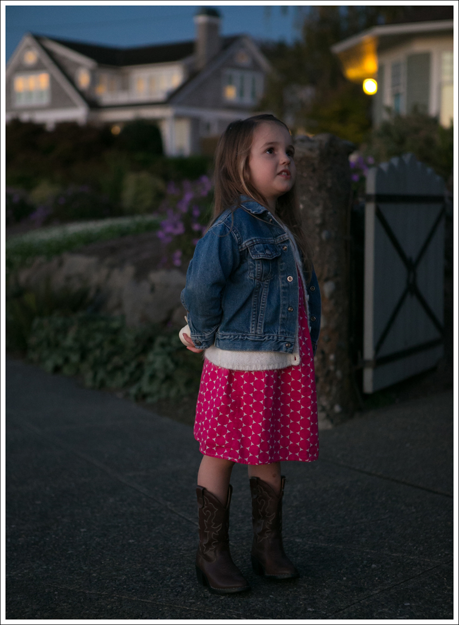 Blog Levis Jacket Old Navy Cardigan and Dress Faded Glory Cowboy Boots-3