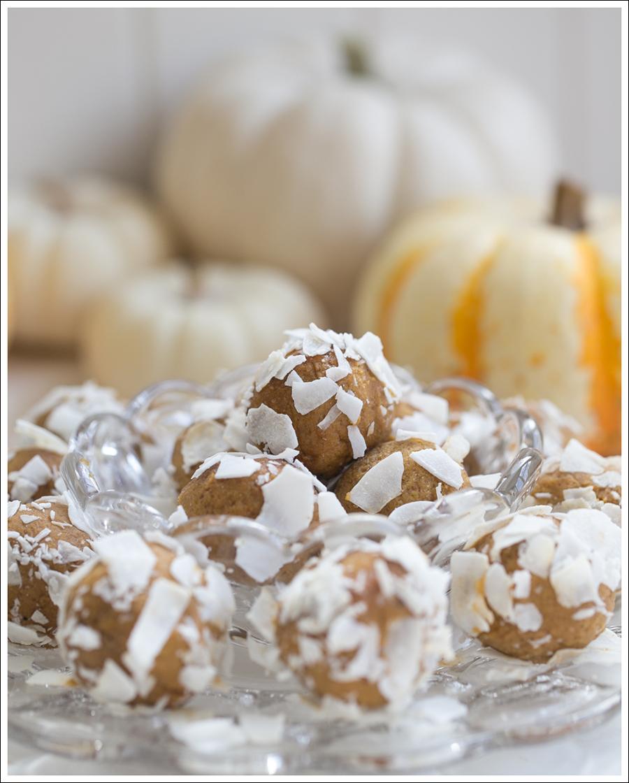 Blog Paleo Pumkin Protein Balls with Coconut-1