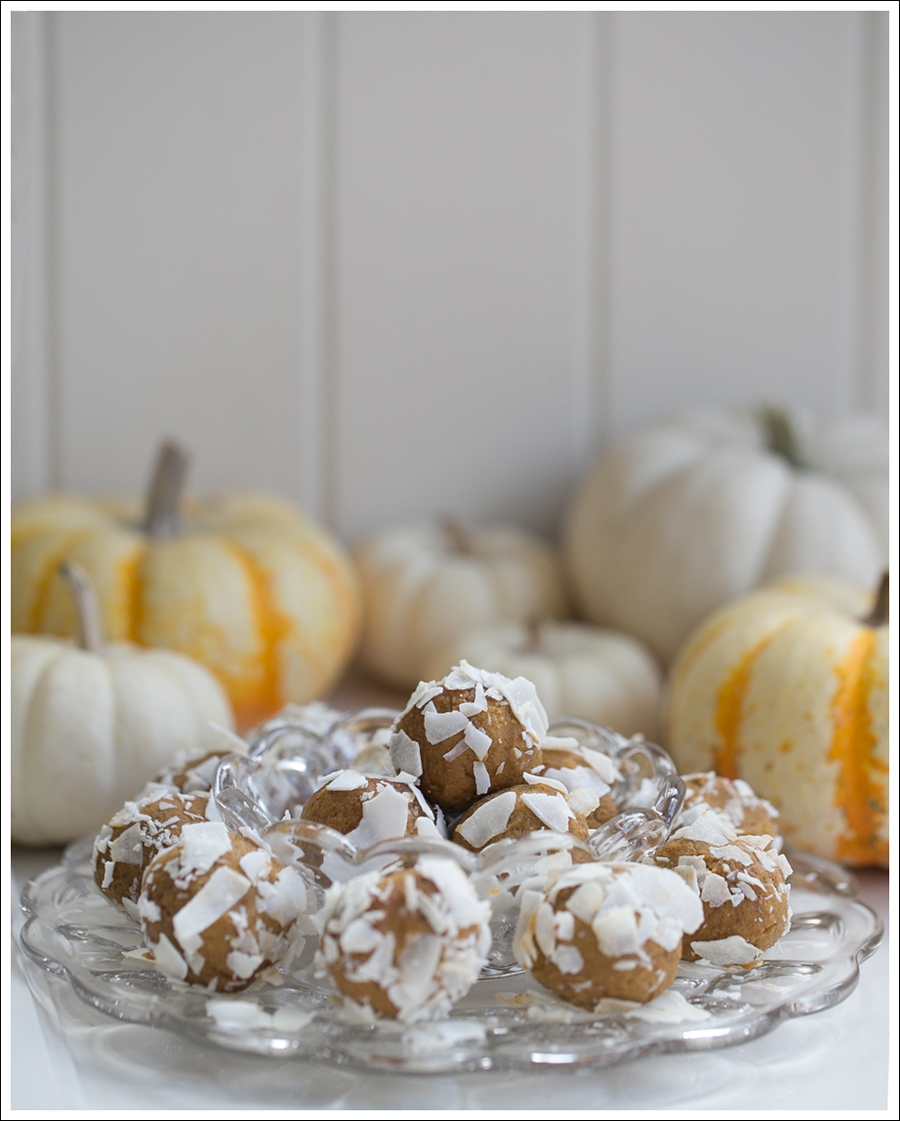 Blog Paleo Pumkin Protein Balls with Coconut-2