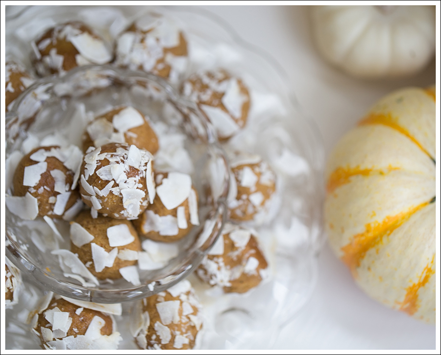 Blog Paleo Pumkin Protein Balls with Coconut-3