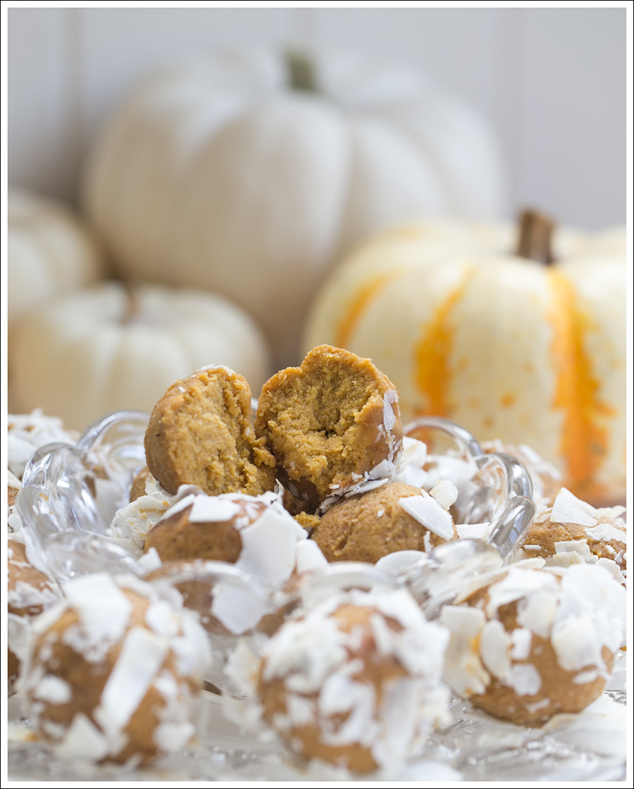 Blog Paleo Pumkin Protein Balls with Coconut-4