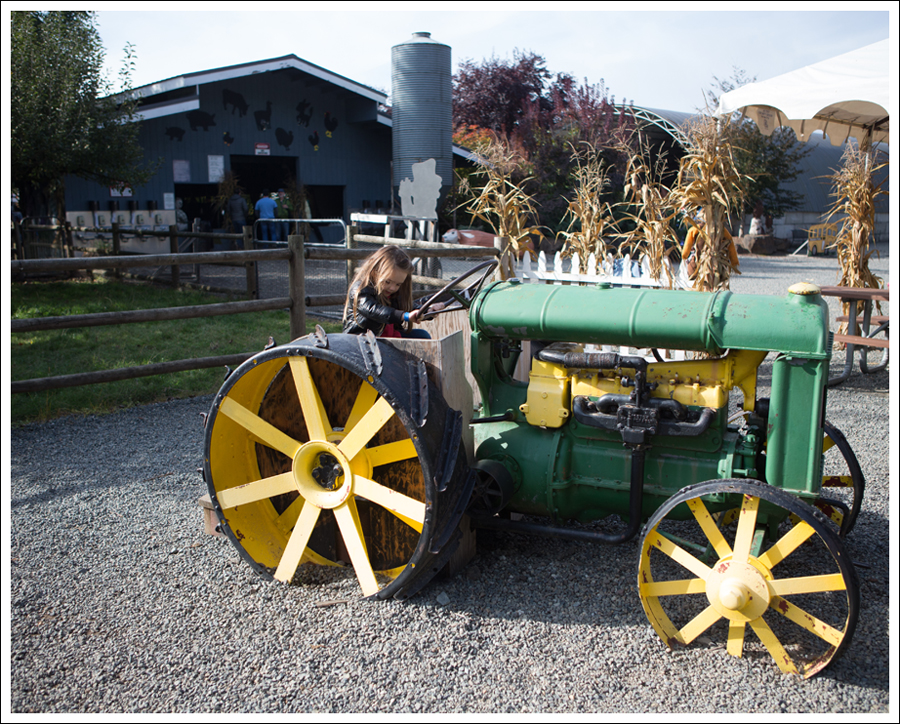 Blog Remilinger Farm Fall Festival-11