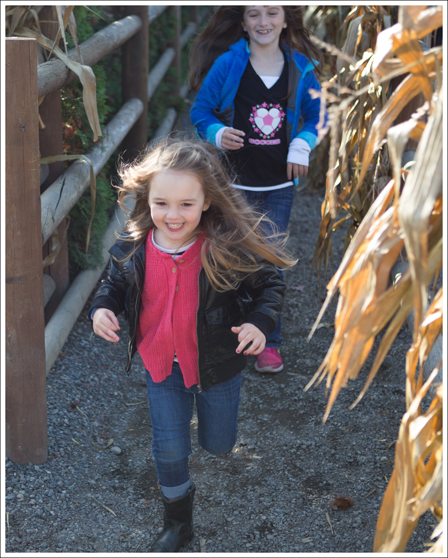 Blog Remilinger Farm Fall Festival-14