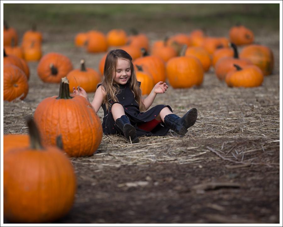 Blog Trinity Pumpkin Patch-7