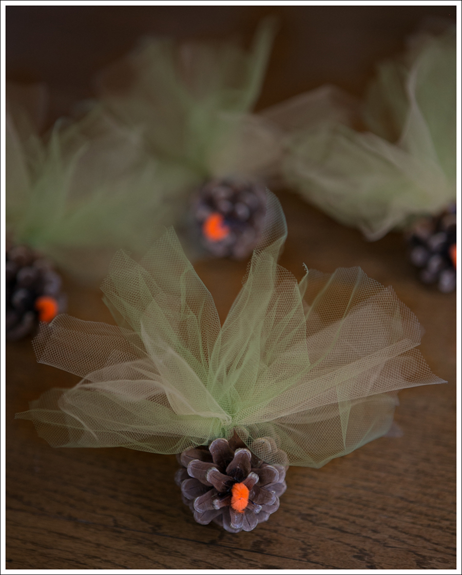 Blog DIY Pinecone Tulle Turkey-1