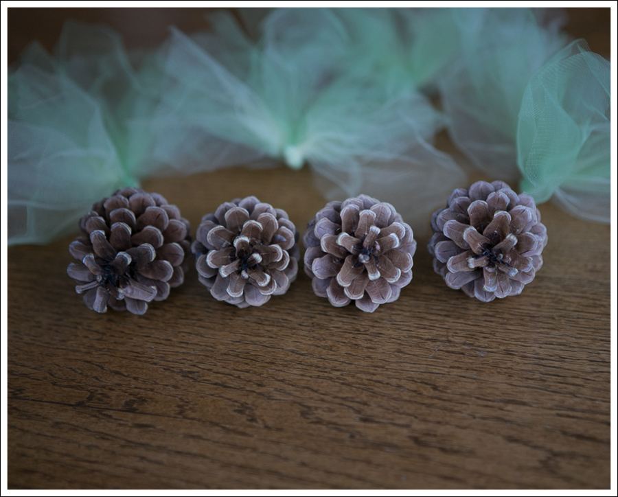 Blog DIY Pinecone Tulle Turkey-7