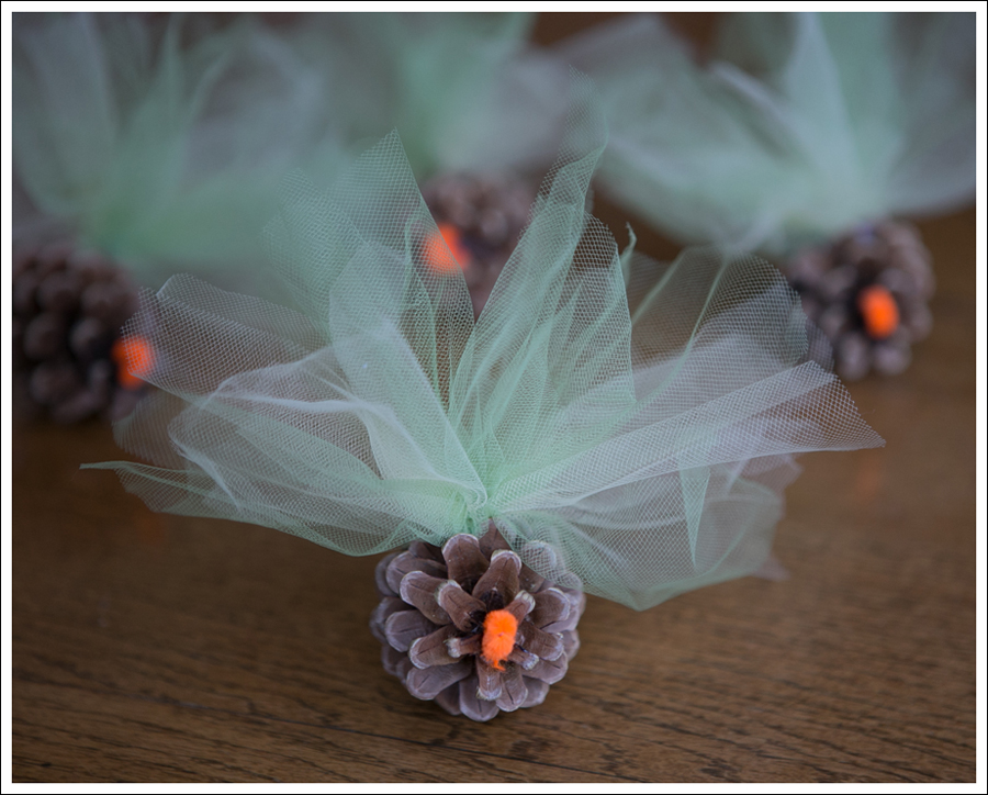 Blog DIY Pinecone Tulle Turkey-9