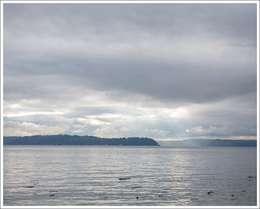 Blog West Seattle View-1