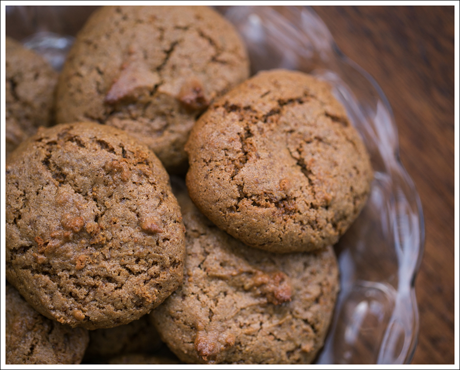 Blog Paleo Nut Free Ginger Snap Cookies-2