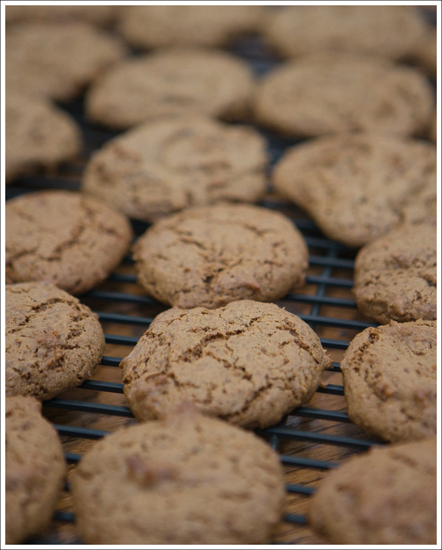 Blog Paleo Nut Free Ginger Snap Cookies-4
