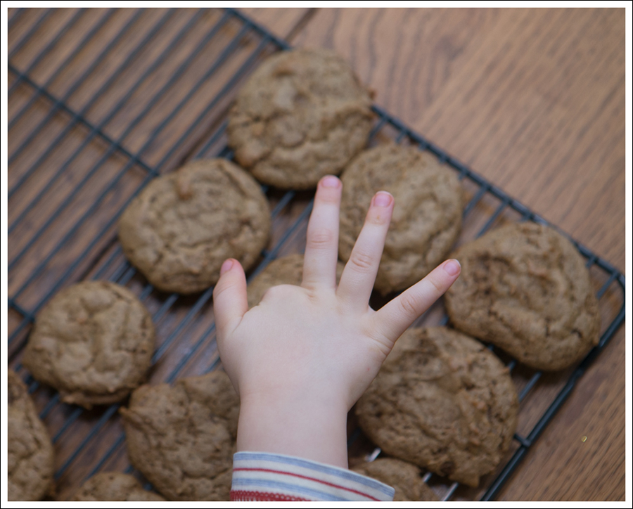 Blog Paleo Nut Free Ginger Snap Cookies-5