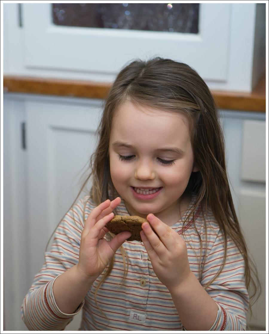 Blog Paleo Nut Free Ginger Snap Cookies-6