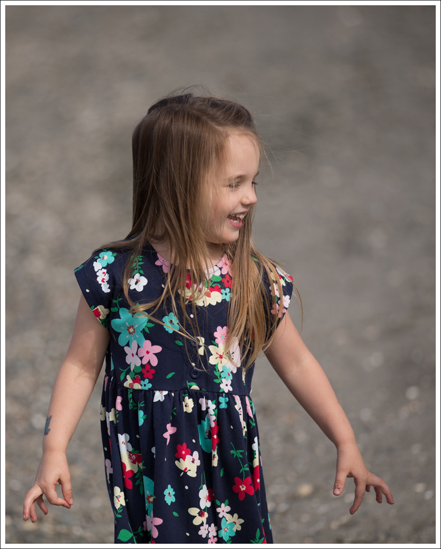 Blog Hanna Andersson Forever Play Dress Navy Floral-13